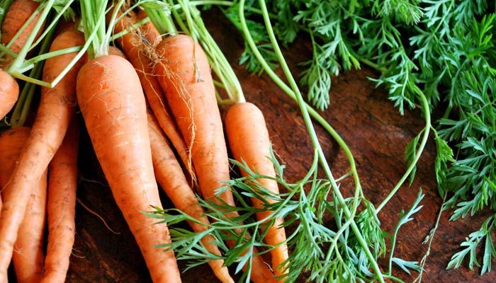 Propiedades zanahoria