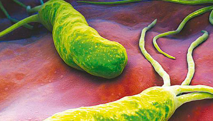 remedios helicobacter pylori